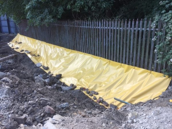 Commercial Japanese Knotweed Removal - TCM Ltd